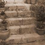 ST GUILHEM LE DESERT HERAULT (26)